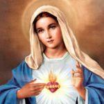 Róża Niepokalanego Serca Maryi